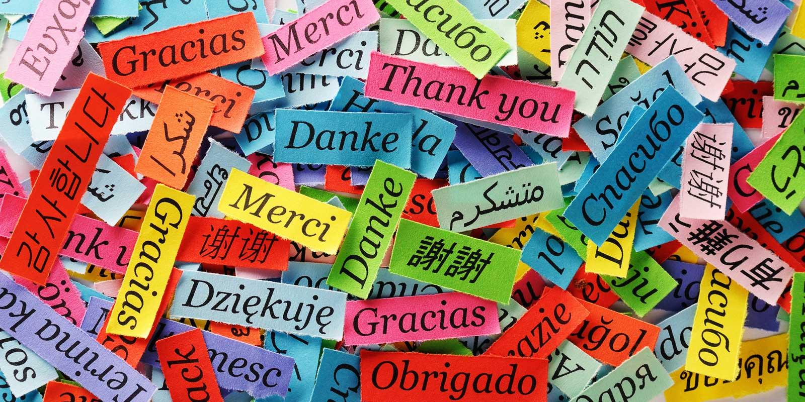 Join Russian Language School in Karol Bagh Delhi For Bright Future